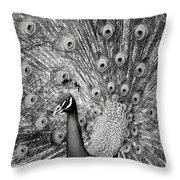 Mother Natures Fireworks Throw Pillow by Karen Wiles