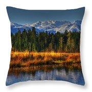 Mountain Vista Throw Pillow by Randy Hall