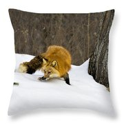 Mousing Throw Pillow by Jack Milchanowski