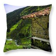 Mud Hut In The Cajas Throw Pillow by Al Bourassa