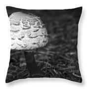 Mushroom Throw Pillow by Adam Romanowicz