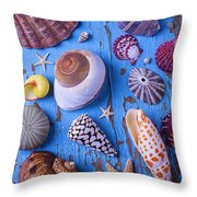 My Shell Collection Throw Pillow by Garry Gay