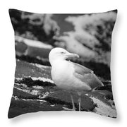 My Turf Throw Pillow by Luke Moore