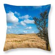 Mynydd Hiraethog Throw Pillow by Adrian Evans