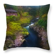Mysteries of the Lewis House Throw Pillow by Darren  White