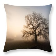 Mystic Morning Throw Pillow by Davorin Mance
