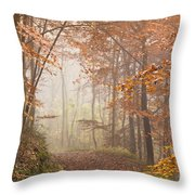 Mystic Woods Throw Pillow by Anne Gilbert