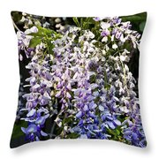 Nancys Wisteria 3 Db Throw Pillow by Rich Franco