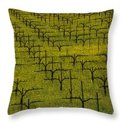 Napa Mustard Grass Throw Pillow by Garry Gay