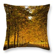 Napa Valley Fall Throw Pillow by Bill Gallagher