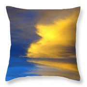 Natural Reflection Throw Pillow by Alan Look