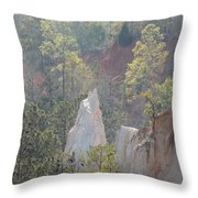 Nature Struggles Throw Pillow by Kim Pate