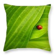Naturellement Complementaire Throw Pillow by Aimelle