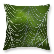 Nature's Best Green Abstract Art Throw Pillow by Christina Rollo