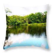 Natures Mirror Throw Pillow by Deborah Fay