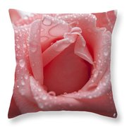 Natures Treasure Throw Pillow by Miguel Winterpacht