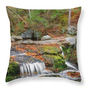 Near And Far Throw Pillow by Bill Wakeley