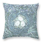 Nest Eggs By Jrr Throw Pillow by First Star Art