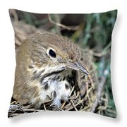 Nest In A Tree Throw Pillow by Susan Leggett