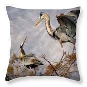 Nesting Time Throw Pillow by Debra and Dave Vanderlaan