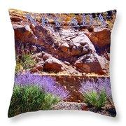 Nevada Throw Pillow by Bobbee Rickard