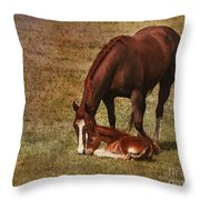 New Birth in Colorado Throw Pillow by Janice Rae Pariza