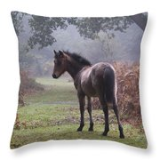 New Forest Pony Throw Pillow by Dave Pressland FLPA
