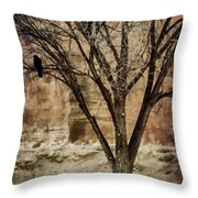 New Mexico Winter Throw Pillow by Carol Leigh