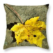 NEW MOON Throw Pillow by JAMART Photography