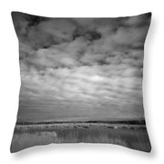 nfrared picture of the nature area Dwingelderveld in Netherlands Throw Pillow by Ronald Jansen