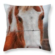 No Fences Throw Pillow by Jeff Kolker
