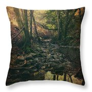 No Matter How Far Throw Pillow by Laurie Search