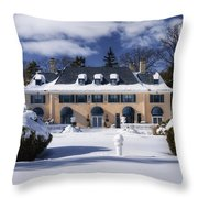 No One Home Throw Pillow by Joan Carroll