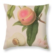 Noblesse Peach Throw Pillow by William Hooker