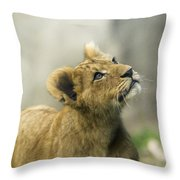 Nobuhle - Looking Up Throw Pillow by Sonya Lang