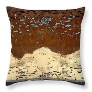 Northern Lights Throw Pillow by Carol Leigh