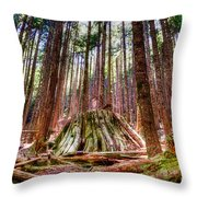 Northwest Old Growth Throw Pillow by Spencer McDonald