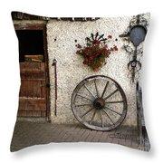 Nostalgia Throw Pillow by Jutta Maria Pusl