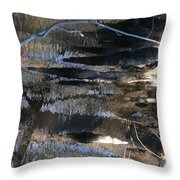 ...not Painting... Throw Pillow by Charles Struse Sr