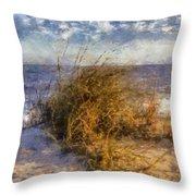 November Dune Grass Throw Pillow by Daniel Eskridge