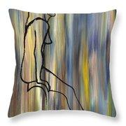 Nude 14 Throw Pillow by Patrick J Murphy