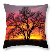 Oak Silhouette Throw Pillow by Cheryl Young