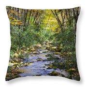 Oconaluftee River In The Gsmnp Throw Pillow by John Haldane