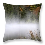 October Frost Landscape Throw Pillow by Christina Rollo