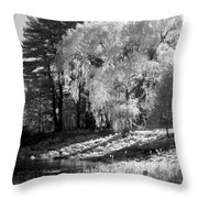 Off The Beaten Path Throw Pillow by Luke Moore