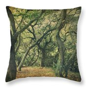 Oh How They Danced Throw Pillow by Laurie Search