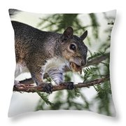 Ok You Caught Me Throw Pillow by Deborah Benoit