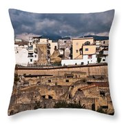 Old And New Throw Pillow by Marion Galt