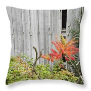 Old Barn in Fall Throw Pillow by Keith Webber Jr