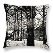 Old Barn Through The Trees Vintage Landscape Art Throw Pillow by Miss Dawn